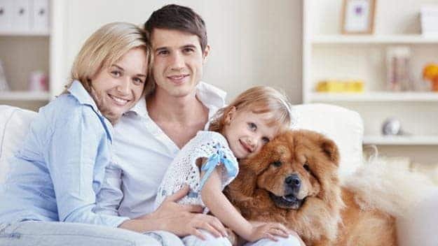 Wills & Trusts dog-young-family Direct Wills Whitley Bay